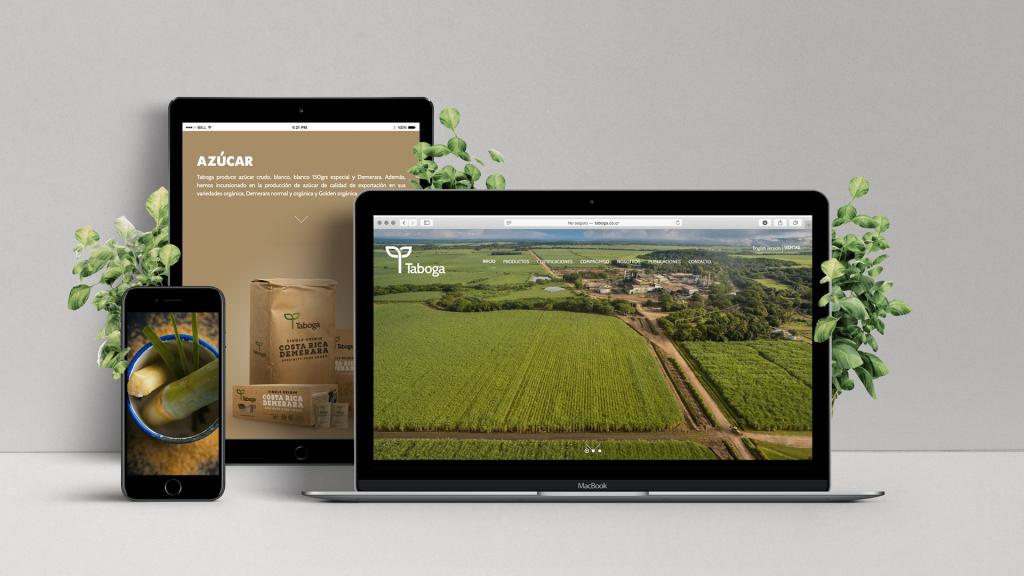 Sitio web creado para nuestro cliente Taboga